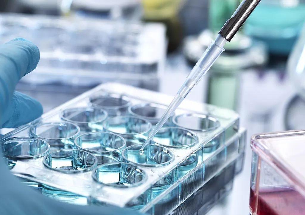 全球资讯_【行业资讯】这个国家尝试用干细胞治疗21种疾病