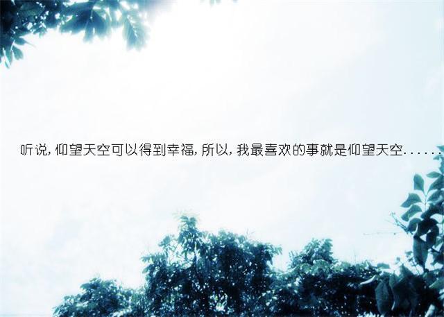 蓝之芳华(亮剑风云)