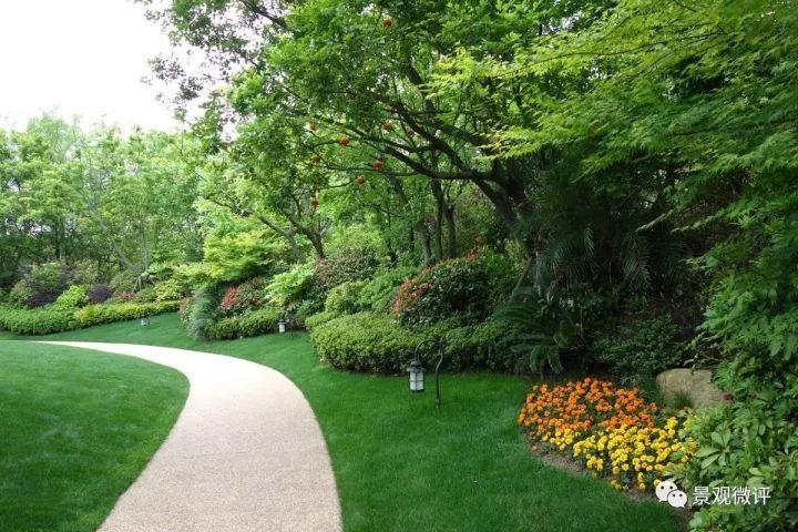 在现代景观设计中封闭的那一面,可以使用大小乔木,灌木和草本植物三层