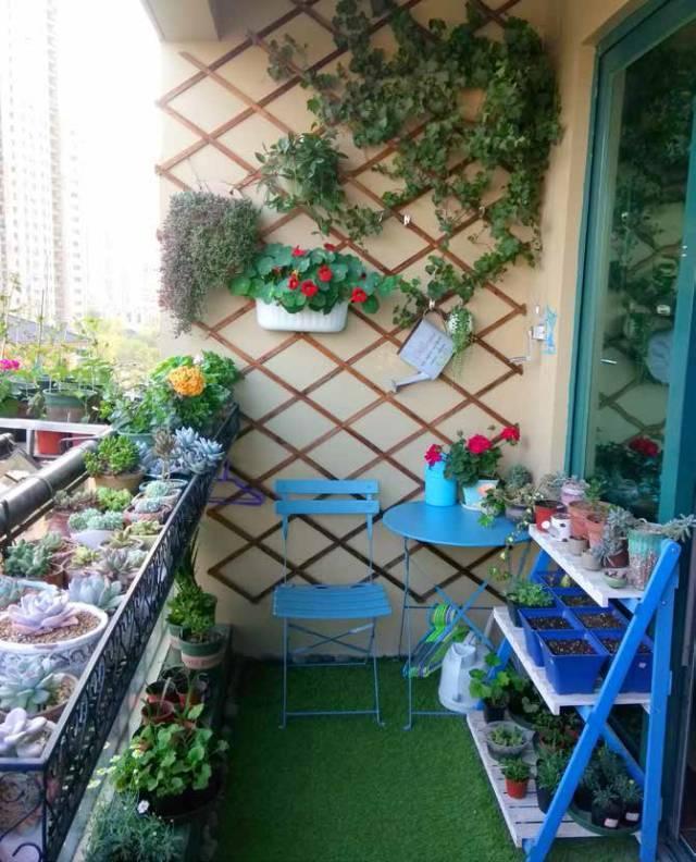 阳台植物平面图手绘