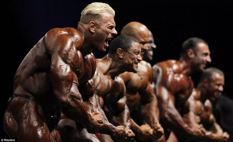40万人的健身参考,新年练成什么样就看这里了