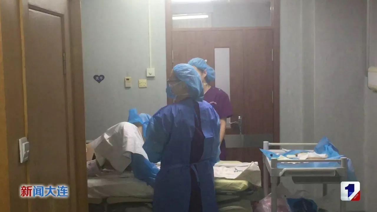 故事和助产士接生v故事吴迪开始教程视频狮子医生蚂蚁与图片