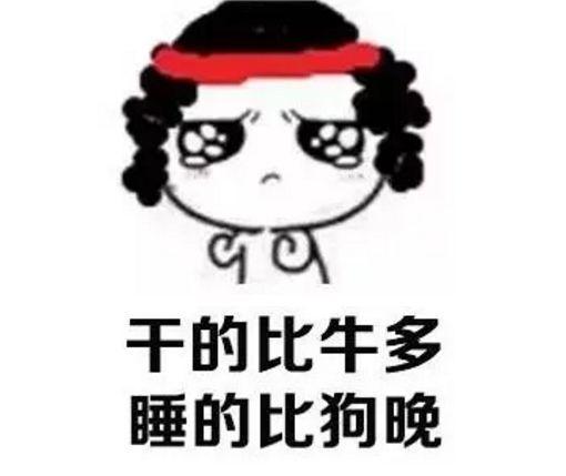 习近平2018新年贺词,狗年旺旺旺!