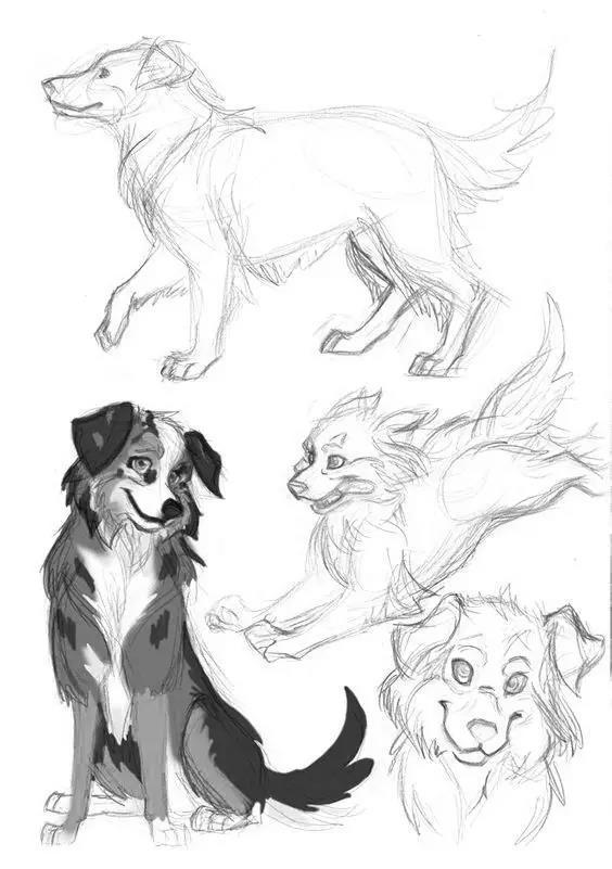可爱狗狗卡通手绘