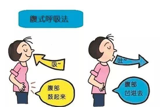 山东省科普作协副理事长刘金霞的