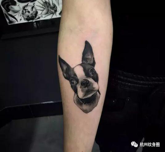 它是家人更是挚友 有一些主人在失去狗狗后 会用纹身的方式来纪念它们图片