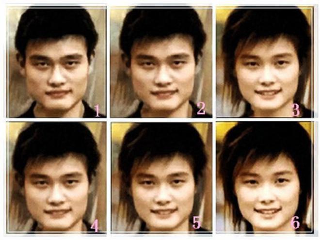 拿她的长相和姚明作比,在当年还不流行表情包的时候,各种李宇春的表情图片