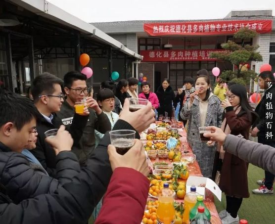 """德化县多肉植物专业技术协会成立!""""多肉王国""""萌花你的眼……"""