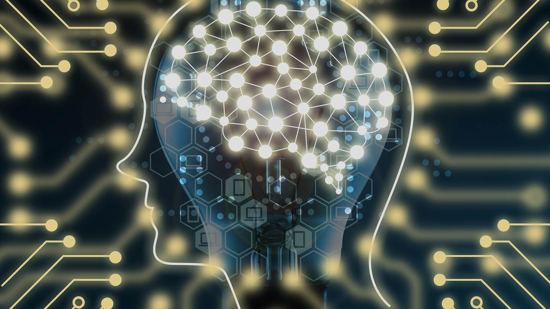 互联网大脑的云反射弧巫师v大脑路径,兼谈et问题模糊维纶+3月尘大脑之+图纸图片