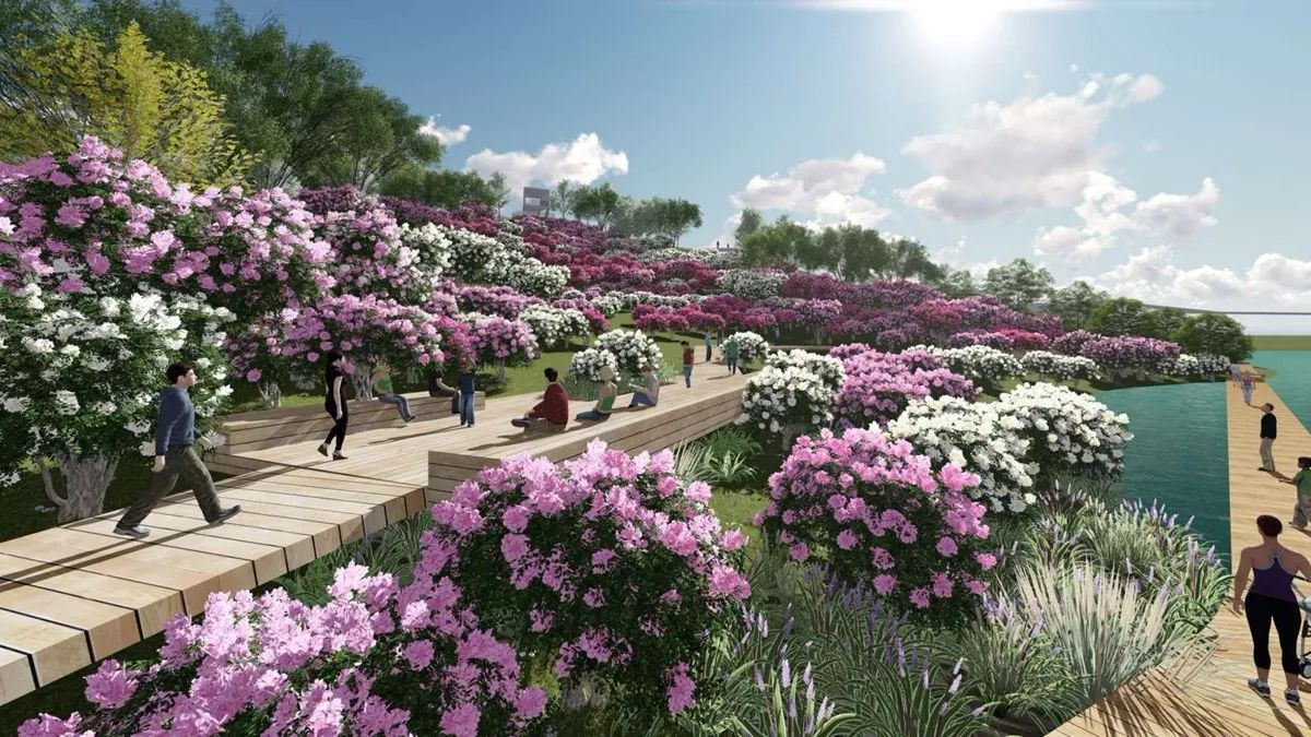 奥雅中标成都华侨城黄龙溪农创园花岛与茶园景观设计项目 | 喜讯