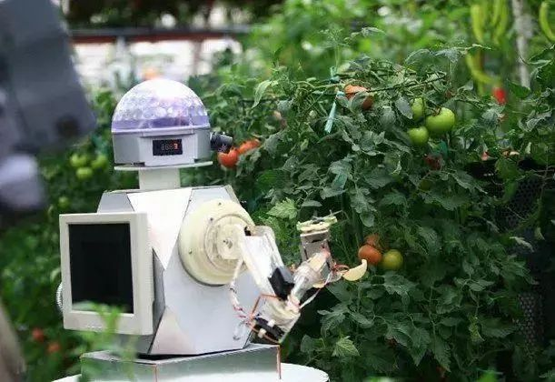 农业想要机器替代人工,你觉得可能吗?
