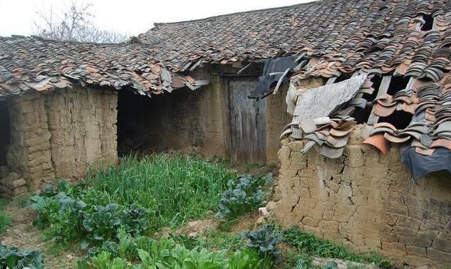舍老农的艳福_农村老房子闲置多年,为何老人还是舍不得拆掉?看老农怎么说!