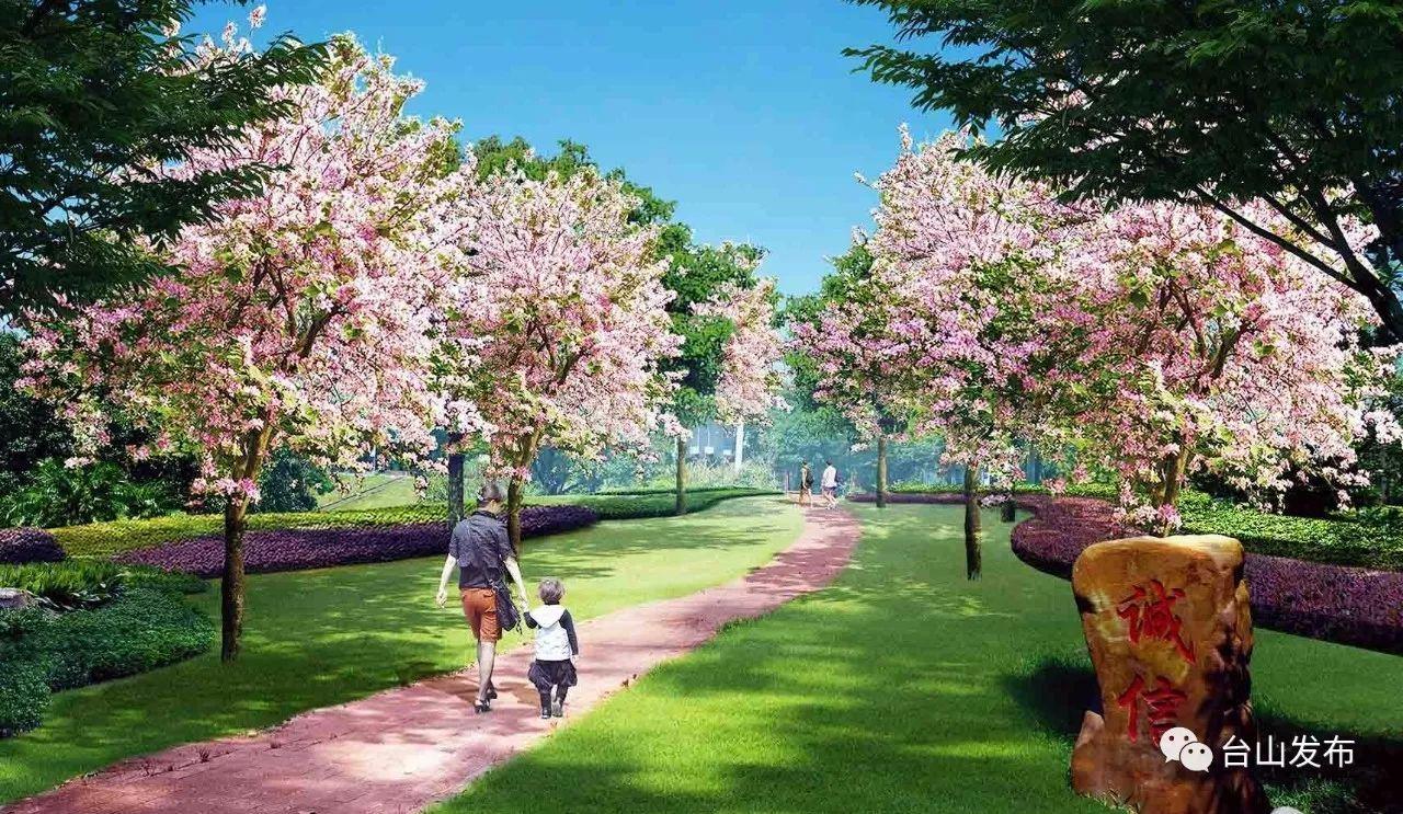 展望台山:花树小道遍布 繁花绿树争艳