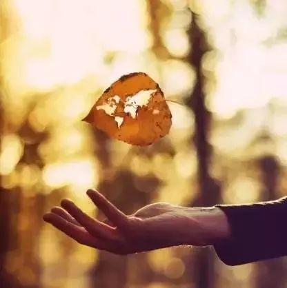 【人生感悟】心安,便是活着的最好状态