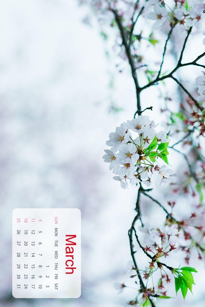 2018内衣桌面壁纸_收藏!2018年上海绝美桌面日历来了,这套壁纸我能用一年!