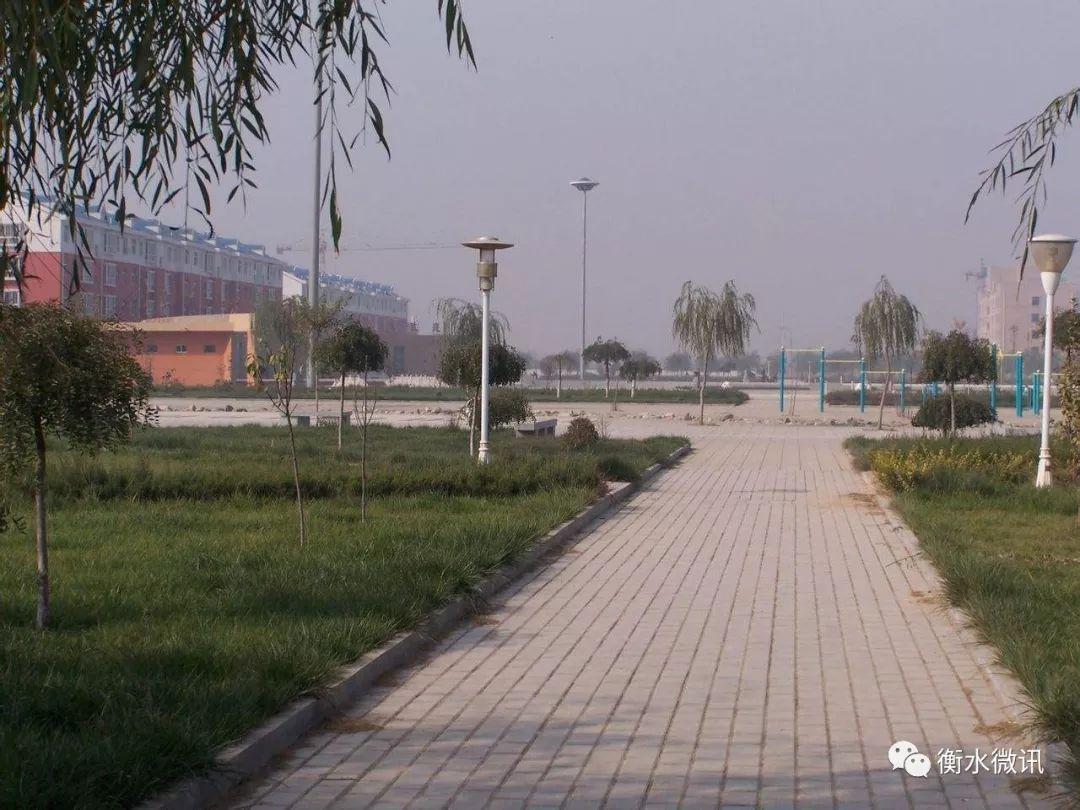 枣强县移民文化园 枣强县索泸公园 安平县汉王公园 饶阳县沱阳公园图片