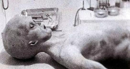 51区外星人的真相视频图片