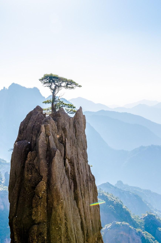 山顶人体艺术_无名的小山头和山顶的松树,构成最具黄山特色的美景.