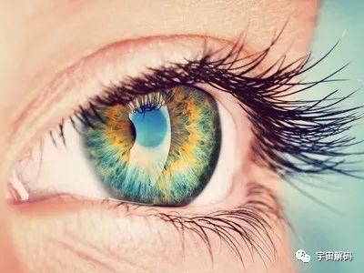 人的眼睛有多少像素_深度揭秘:人的眼睛分辨率能有多少像素