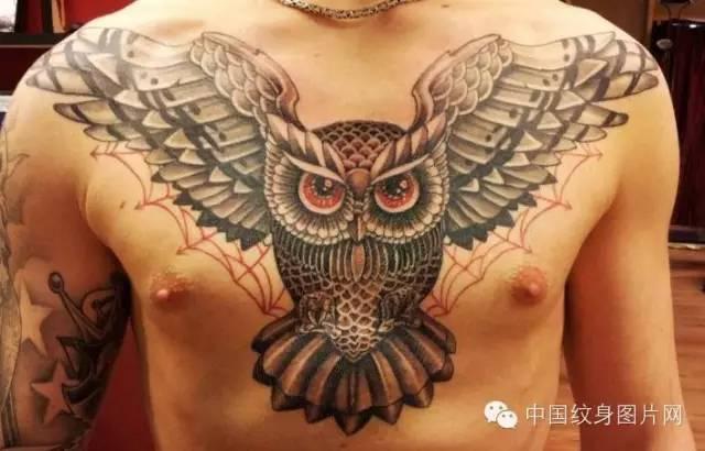 希腊神话中的智慧女神雅典娜的爱鸟是一只小鸮,因而古希腊人把猫头鹰
