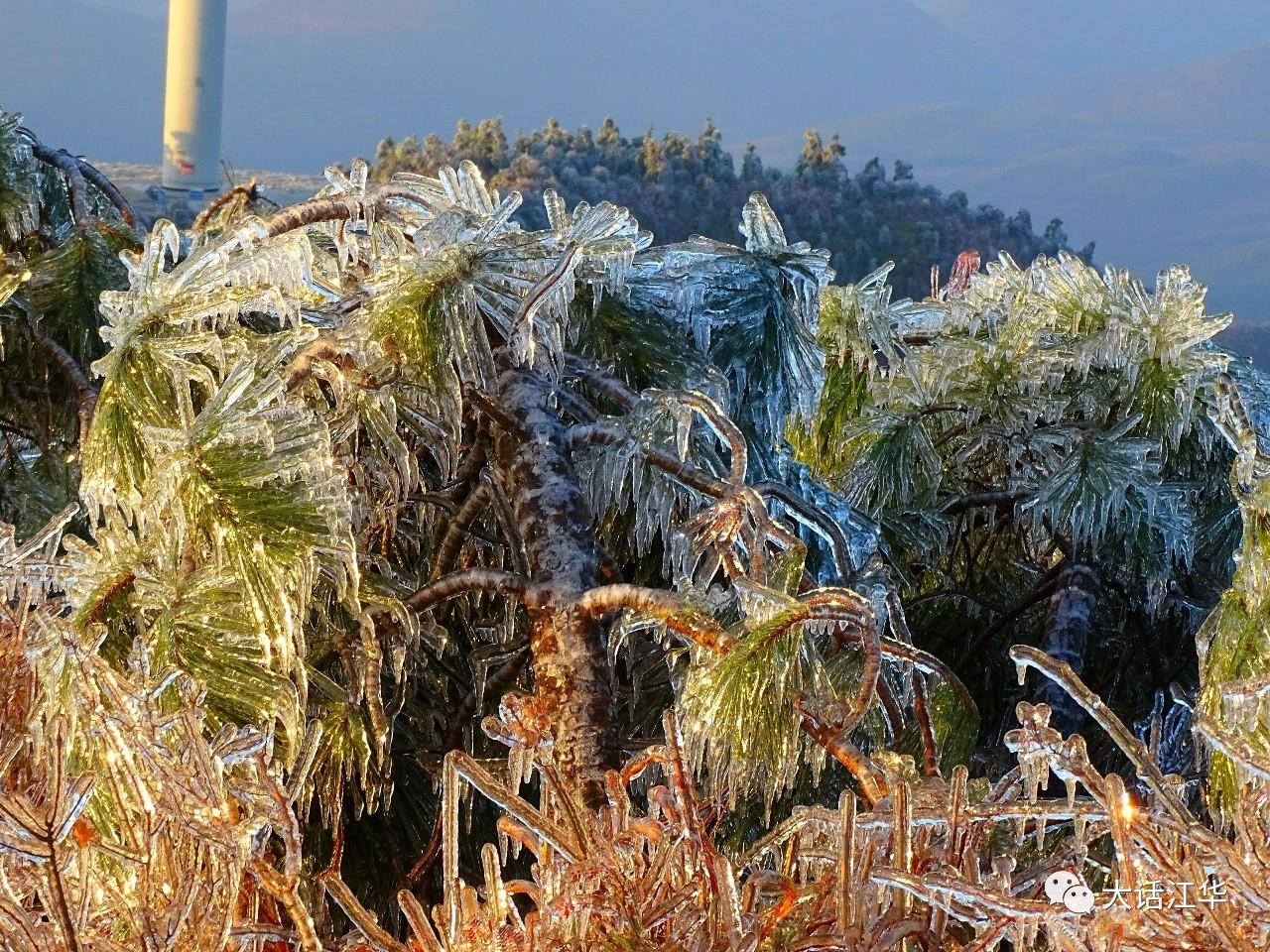 江华这里的雪景,白茫茫一片,美得让人心醉!