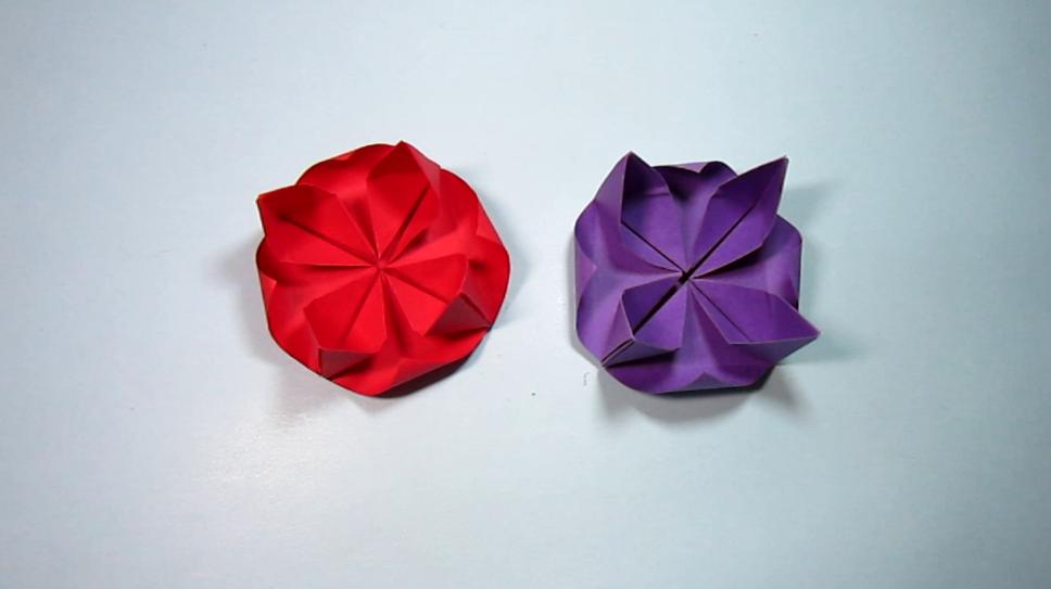 简单的手工折纸莲花 3分钟就能学会睡莲