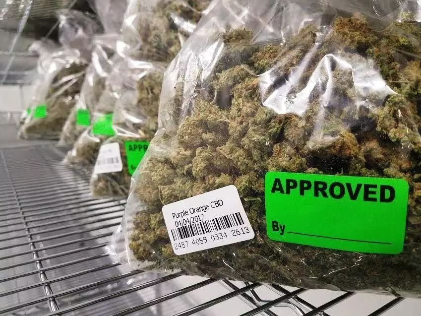 大麻店进驻美国社区遭遇重重阻力