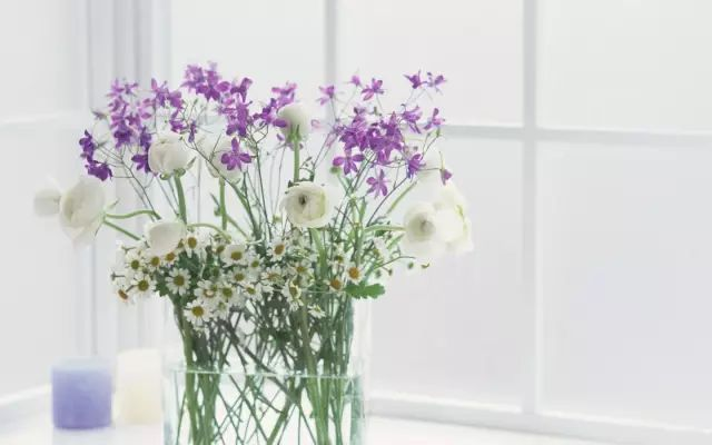 壁纸 仿真 仿真花 仿真植物 花 花束 鲜花 装饰 桌面 640_400