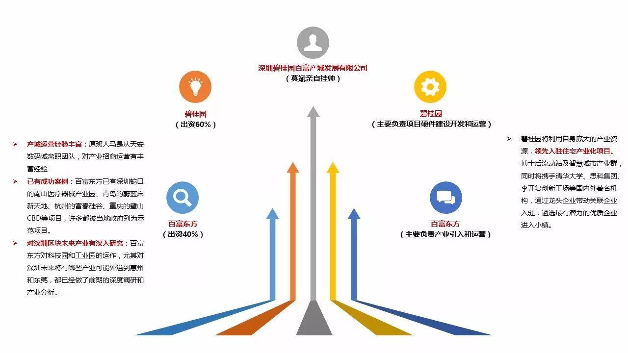2017年中国特色小镇运营商品牌影响力TOP50