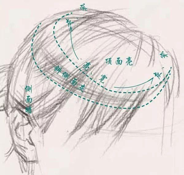 干货,教你怎么画出头发的质感!