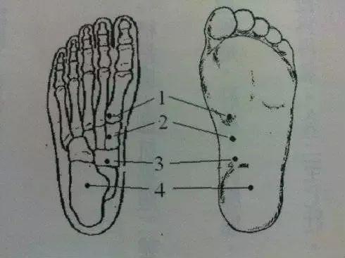 你的脚底,藏着5个抗癌穴!