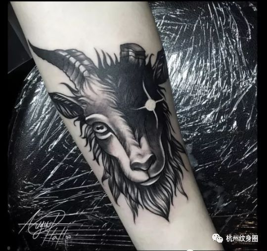 tattoo | 纹身素材: 摩羯座(capricornus)