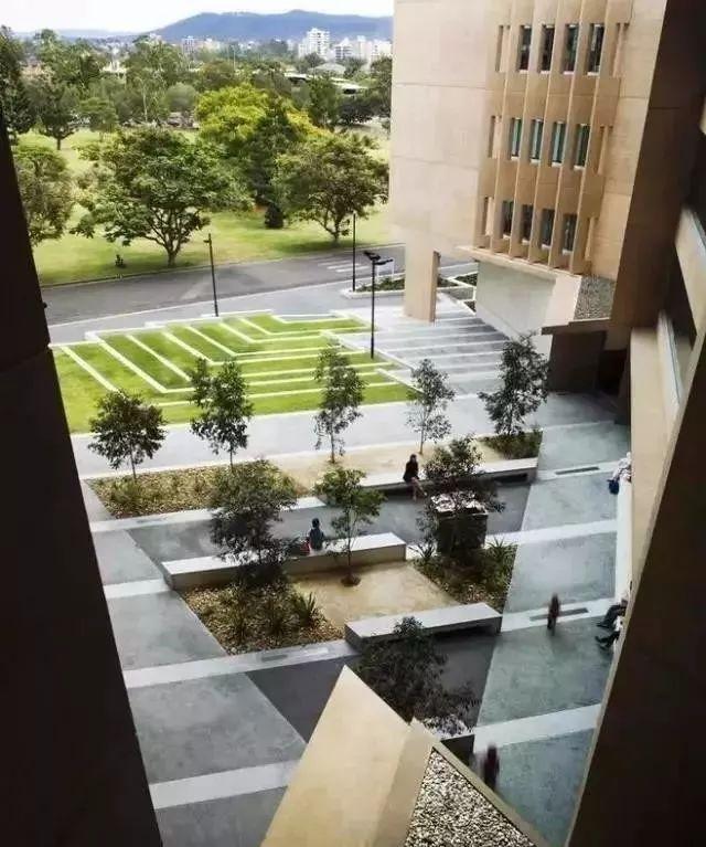 【设计要点】树阵景观的集锦配置植物知名平面设计网站图片