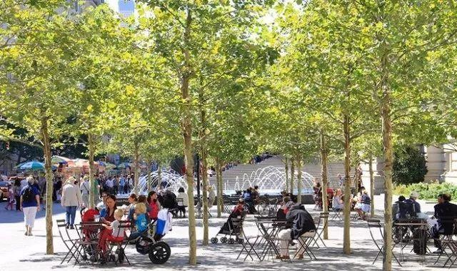 【设计集锦】树阵秋水的景观配置植物要点设计图图片