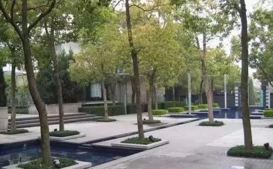 【设计要点】树阵集锦的植物配置景观指纹锁毕业设计图片