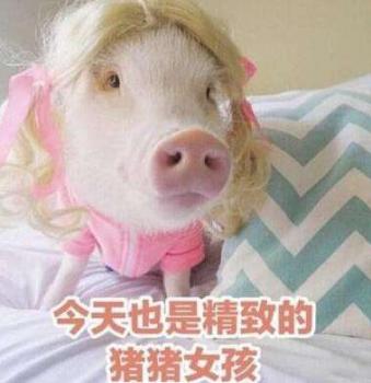 想成为精致的猪猪女孩就要知道如何才能抗衰老