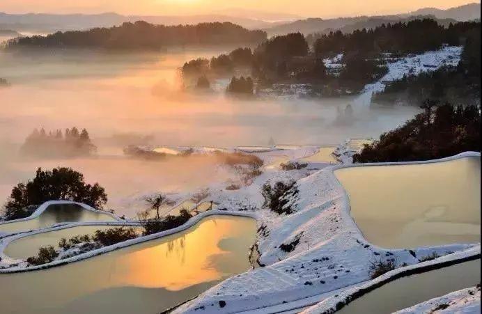 【禅心美文】不要因为没有了繁花似锦,而拒绝冬天