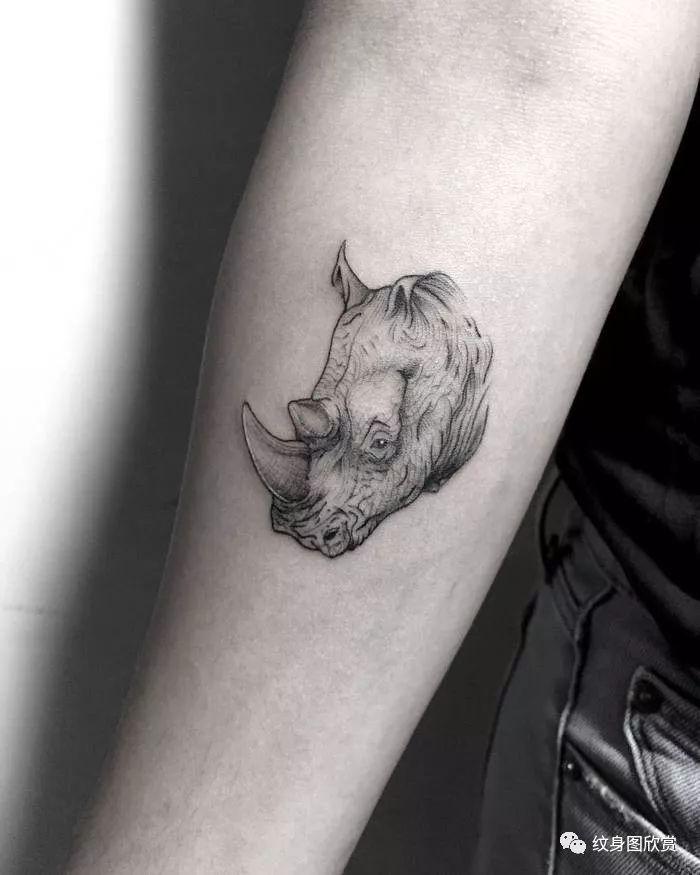 动物纹身 - 犀牛纹身图案