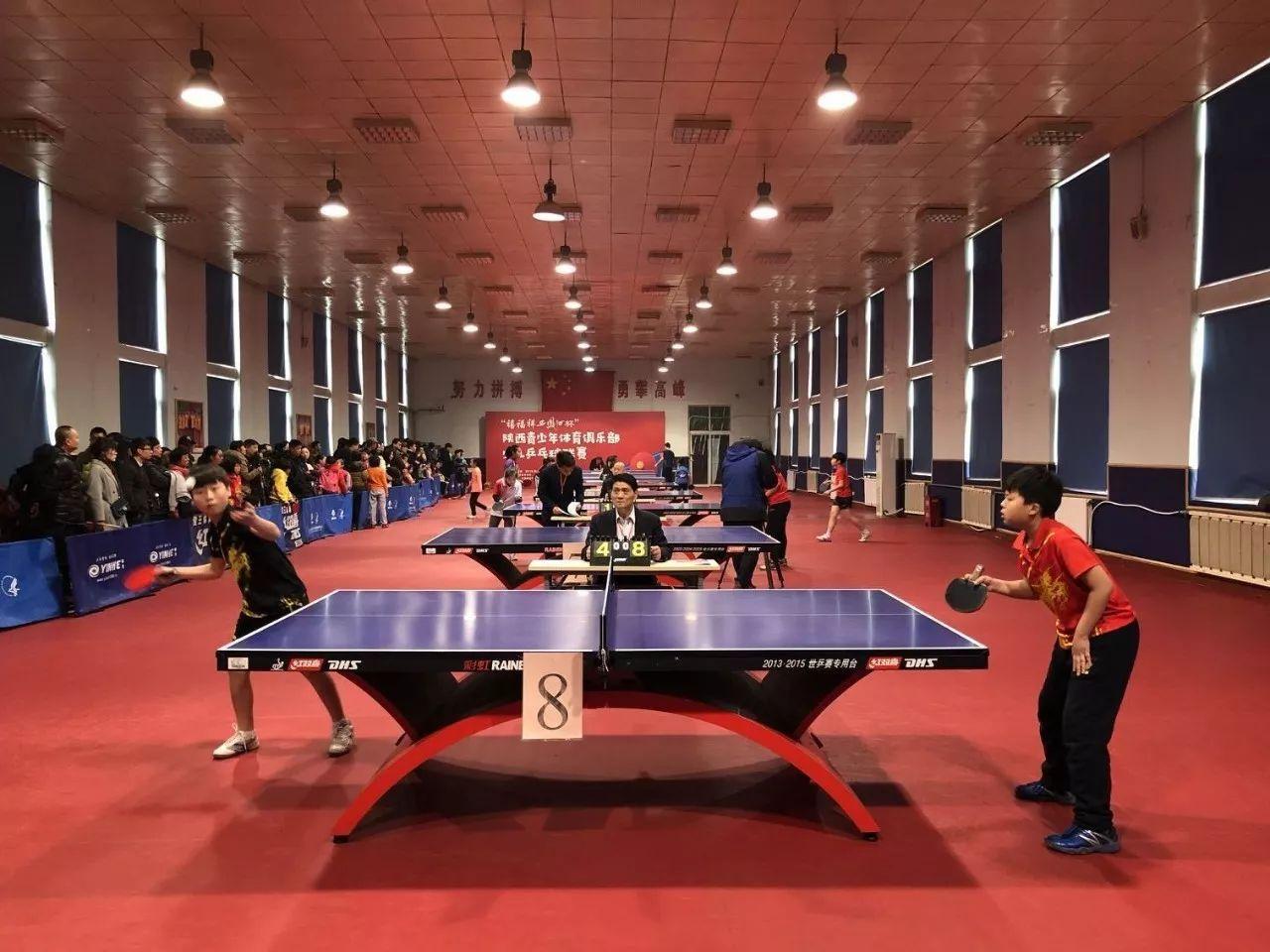 陕西省青少年体育俱乐部乒乓球西部收拍英式马术和联赛马术图片