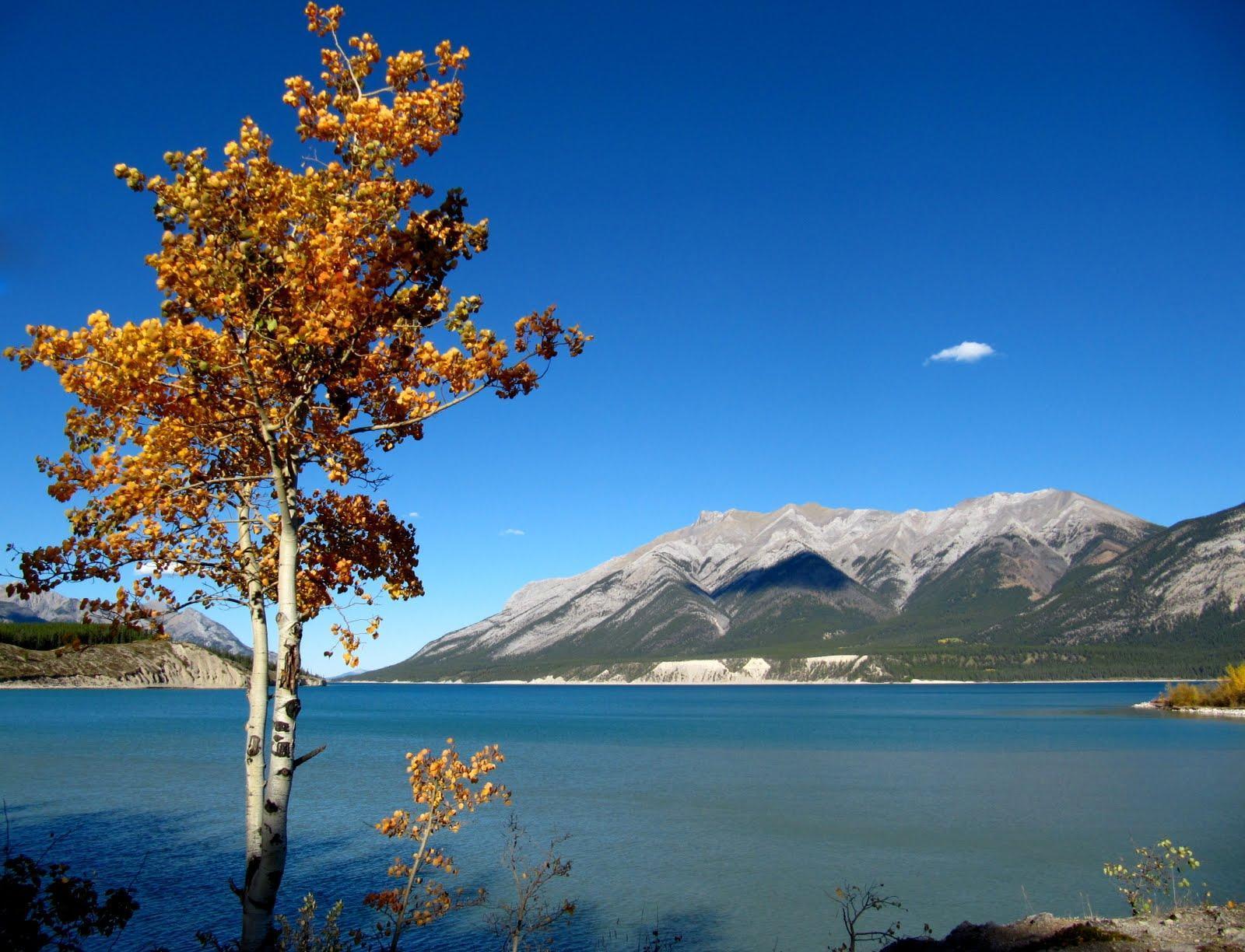 最具拍摄价值的湖泊:地处两大着名景区内,因太凶险被排除