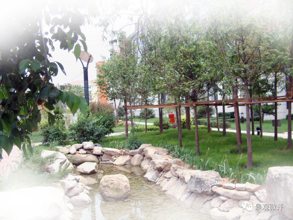树木景观的设计与施工