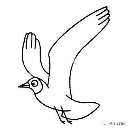 海鸥的简笔画怎么画