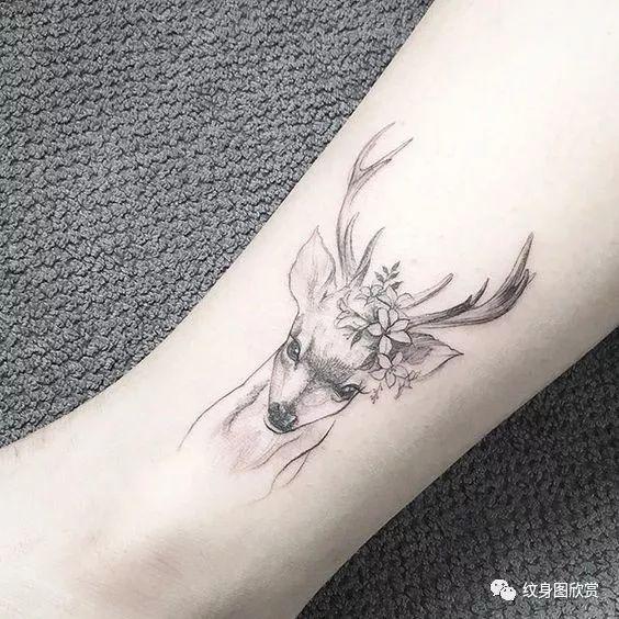 动物纹身 - 鹿纹身图案(87张)