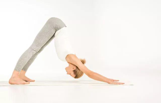 前屈背部伸展式
