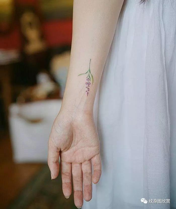植物纹身 - 【薰衣草】纹身图案