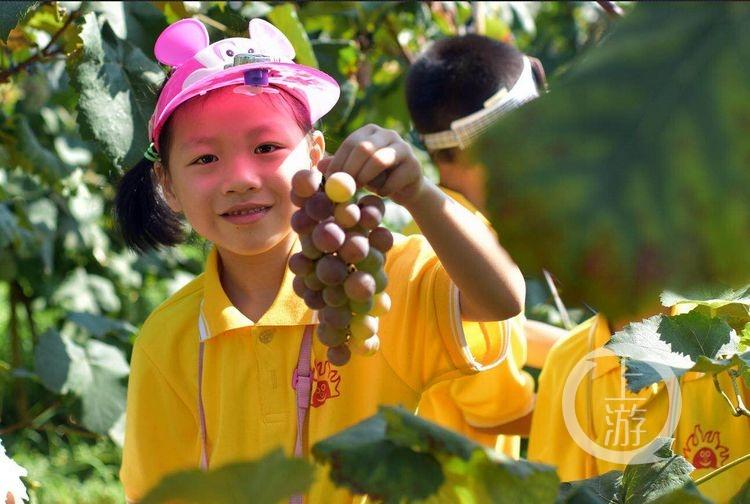 幼儿园秋季农作物手工制作