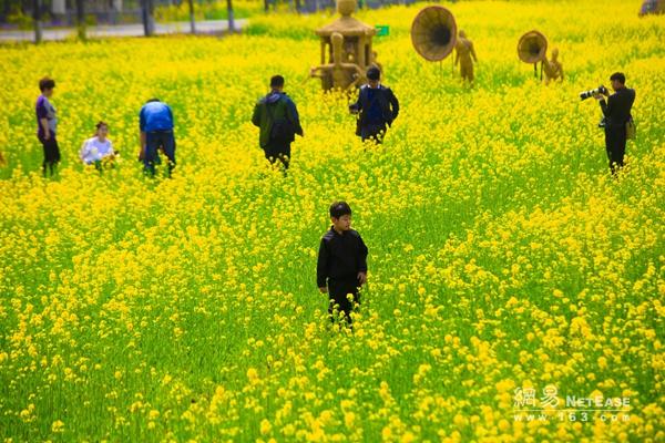 """【中国梦·实践者】山东代村王传喜:打造全国首个""""国家农业公园"""""""
