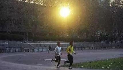 他的名字叫何家南,一个从大兴安岭腹地跑出,径直跑进省师范大学的大三