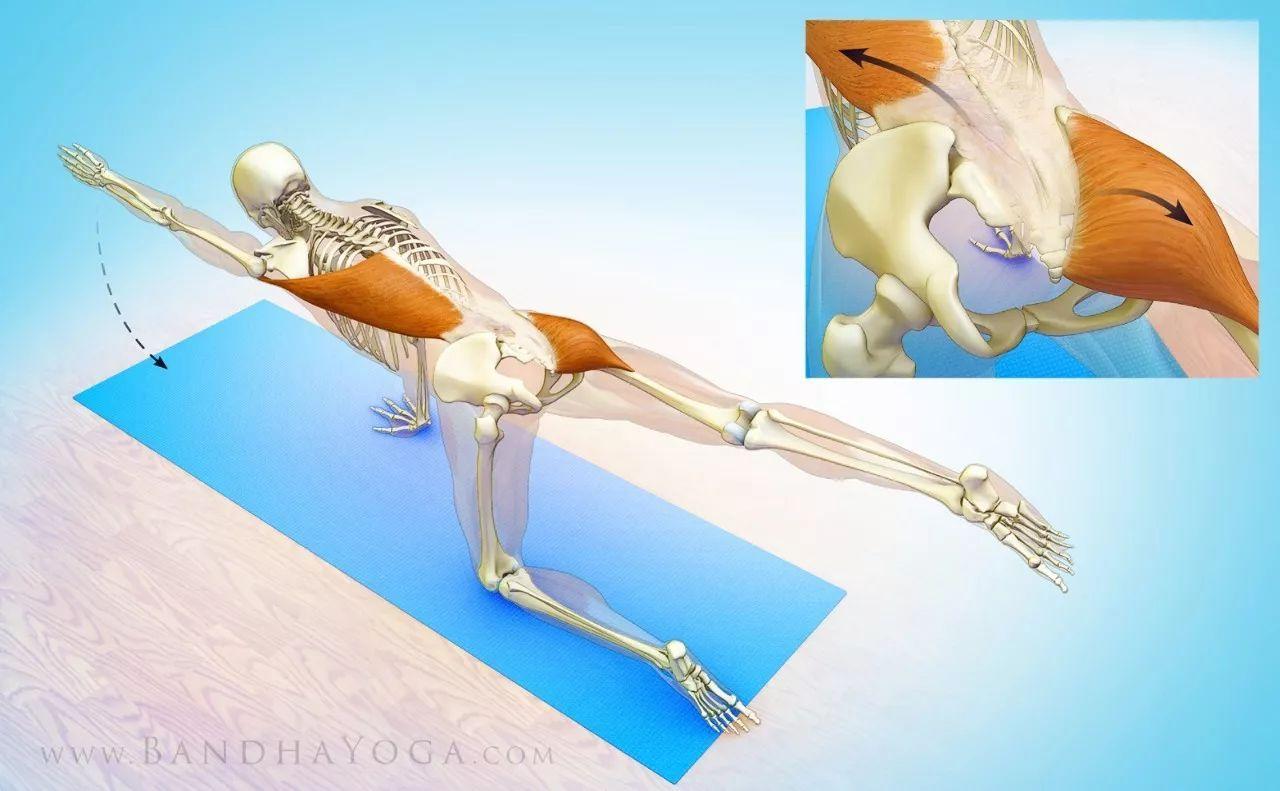 原来常练这些瑜伽体式,可以科学有效的瑜伽翘臀!图片