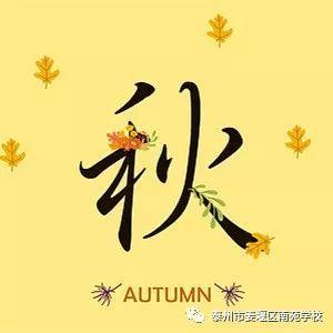 动手贴制树叶拼贴画,   把秋天留住.   心情在路上